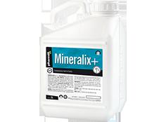 Mineralix+